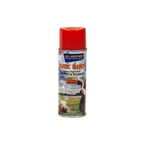 Quik Shot Spray Paint w/Invert Tip Orange 16oz