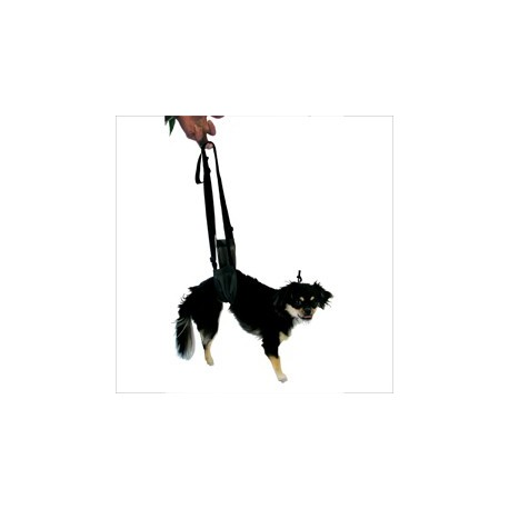 EZ Lift Harnessfor Dogs large