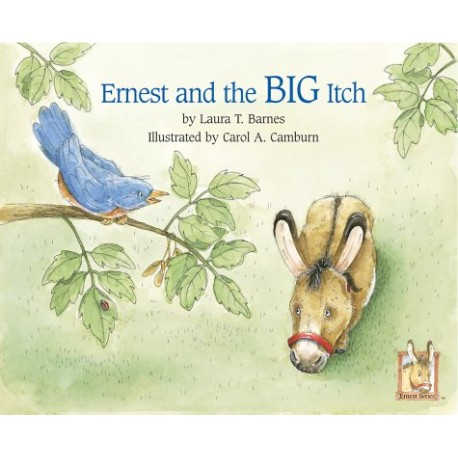 Ernest and the Big Itch book