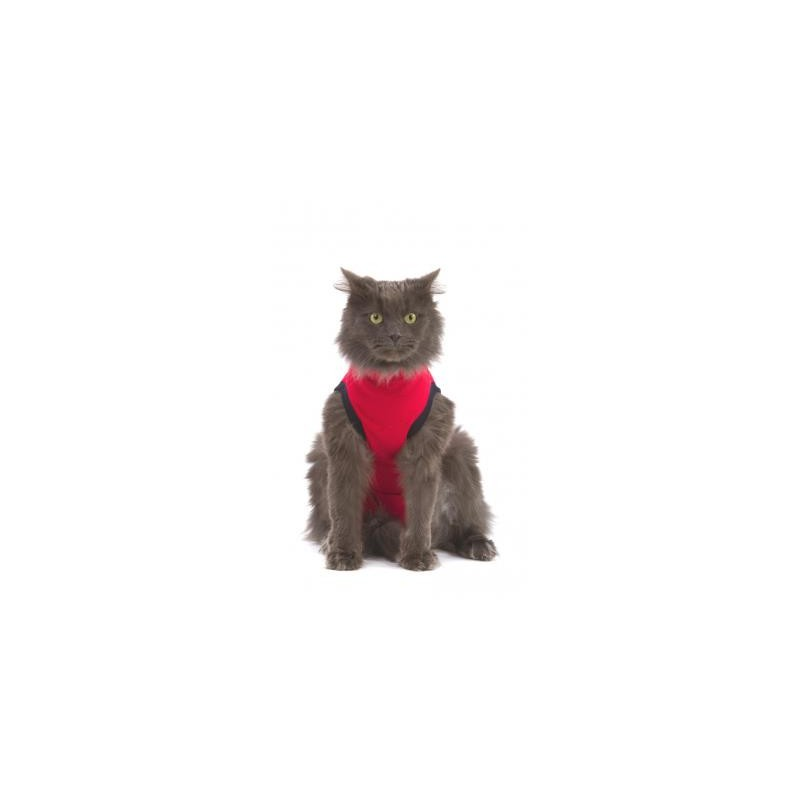 Medical Pet Shirt Cat