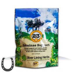 Silver Lining Herb 23 Laminae Support