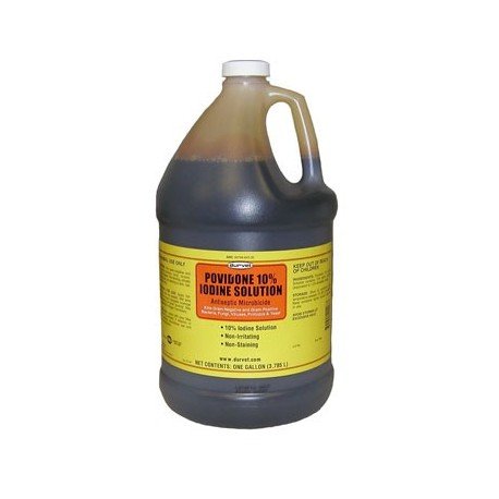 Povidone 10% Iodine Solution