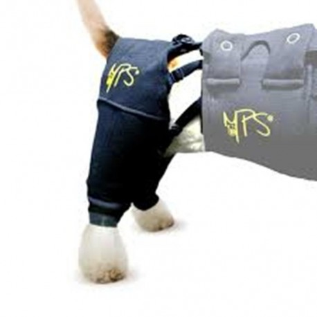 Medical Protect Hind Leg Sleeve Canine Small