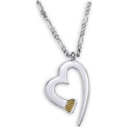 NC60337 Horseshoe Nail Heart Necklace