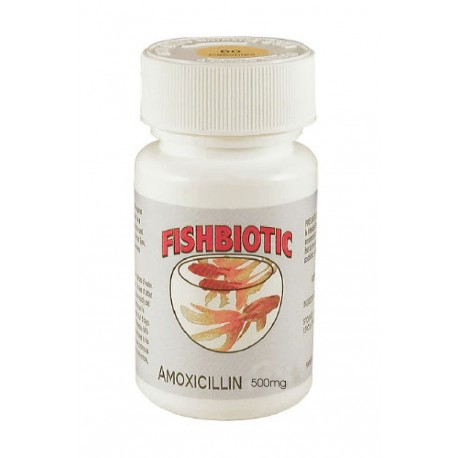 Fishbiotic Amoxicillin Capsules 500mg