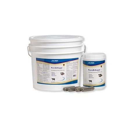Pect-A-Guard Plus Capsules Feed Supplement for Beef and Dairy Cattle