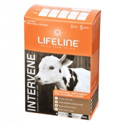 Lifeline Intervene Supplement