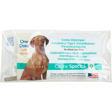 Canine Spectra 9 with Syringe