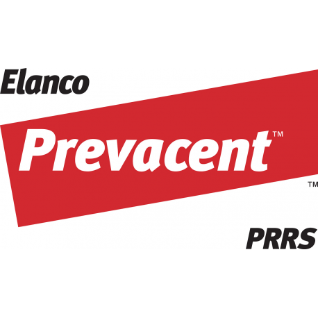 Prevacent PRRS