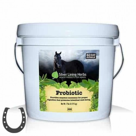 Silver Lining Herb Probiotic for Horses