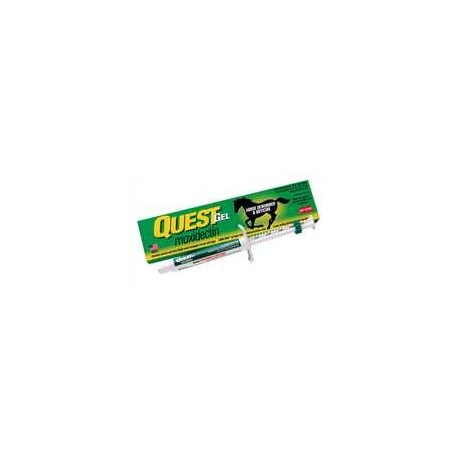 Quest  Equine 2% Gel Wormer 1ds