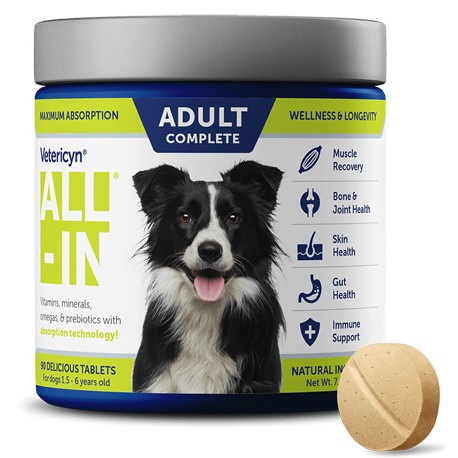 Vetericyn All-In Life Stage Adult Dog Supplement