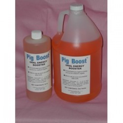 CLOSEOUT!!! Pig Boost Oral Energy (gal)