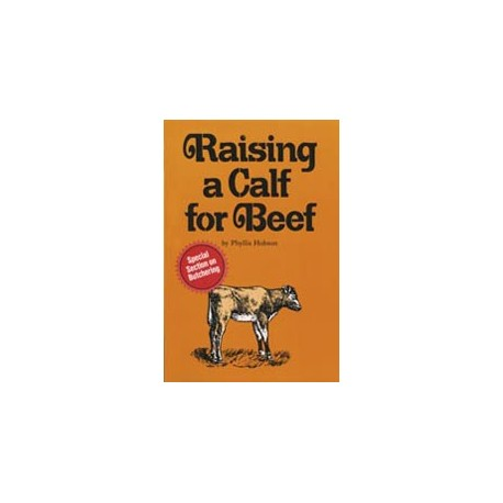 Raising a Calf for Beef